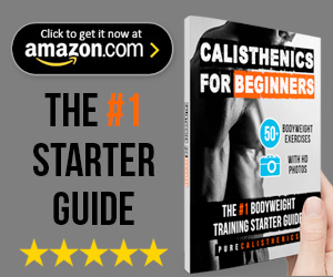 Calisthenics for Beginners Book