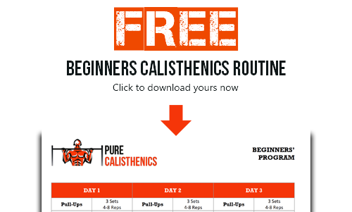Beginners Calisthenics Routine