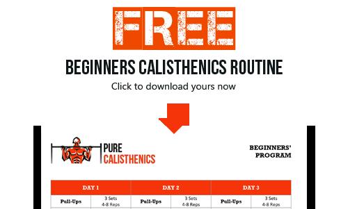 Beginners Calisthenics Routine