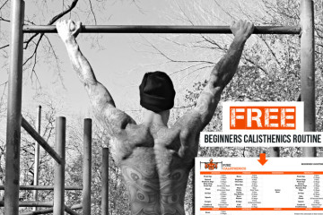 Calisthenics Workout Routine