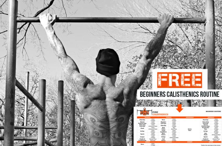 Calisthenics Workout Routine