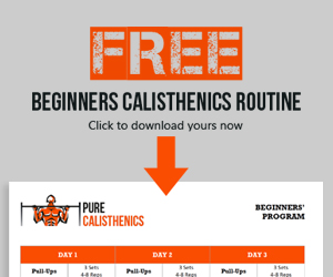 Free Calisthenics for Beginners Routine